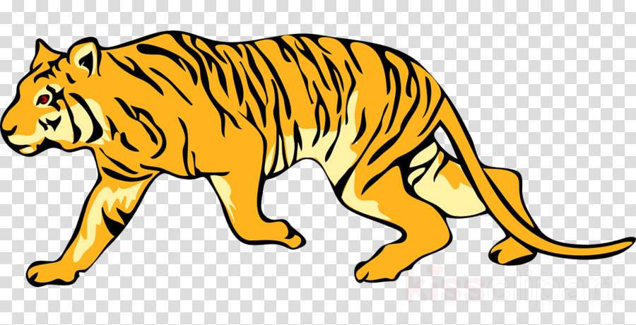 Library of tiger jpg black and white library background ...