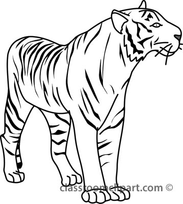 Tiger clipart black and white outline clip free download 12+ Tiger Clipart Black And White | ClipartLook clip free download
