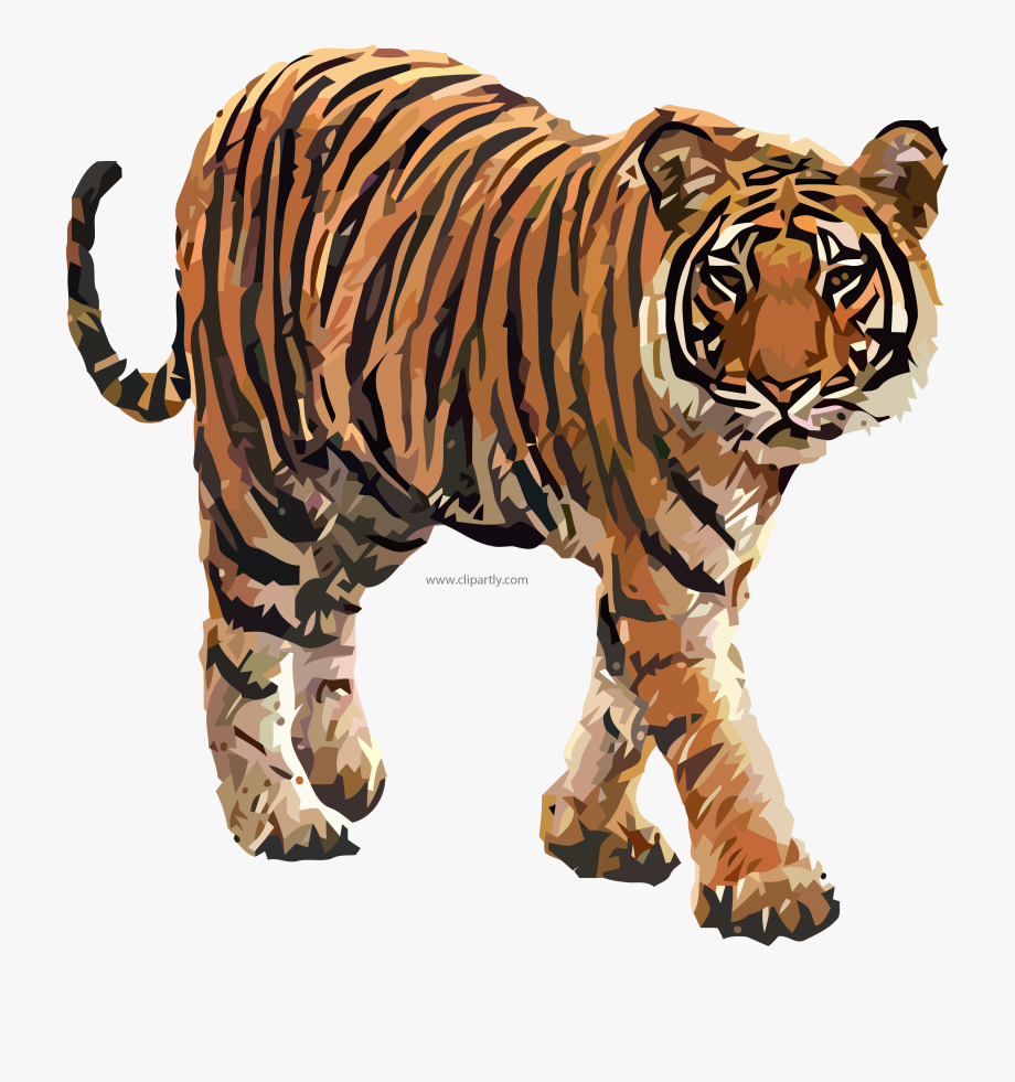 Tiger clipart images image library stock Come Tiger Clipart Png Image Www - Tiger Clipart Png #374054 ... image library stock