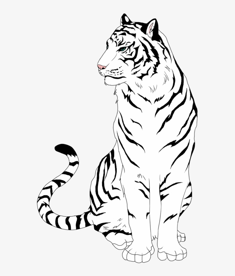 Tiger clipart line drawing banner royalty free stock White Tiger Clipart Easy - Tiger Free Line Art - Free ... banner royalty free stock