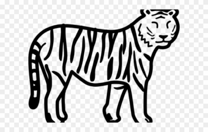 Tiger drawing clipart clip art royalty free Save Tiger Easy Drawing Clipart (#1183370) - PinClipart clip art royalty free