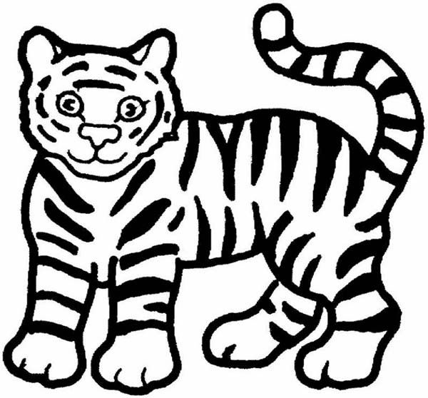 Tiger drawing clipart banner royalty free stock Simple coloring pages draw a tiger a cute cartoon drawing of ... banner royalty free stock