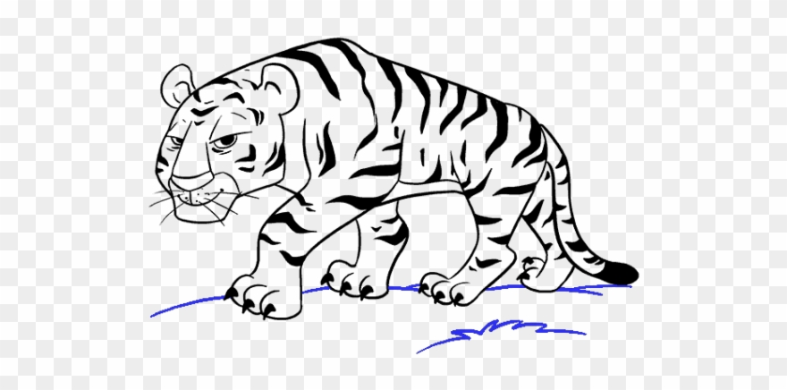 Tiger drawing clipart clip black and white download Drawn Cartoon Tiger - Cartoon Tiger To Draw Clipart ... clip black and white download