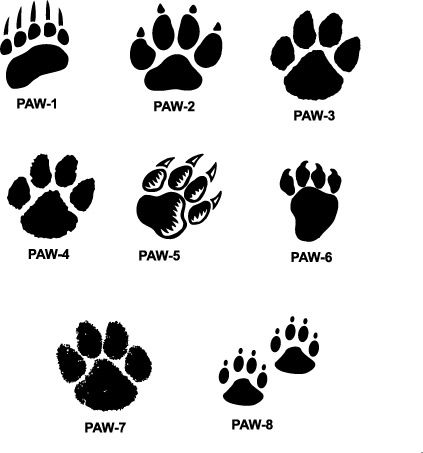 Tiger feet clipart banner transparent tiger paw prints walking drawing | cougar paw prints cougar ... banner transparent