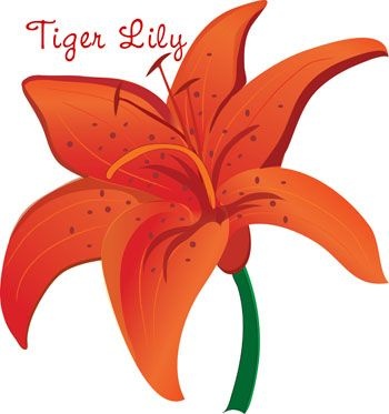 Tigerlily clipart jpg black and white Pin by Keren Mayer on Tigerlily | Free flower clipart ... jpg black and white