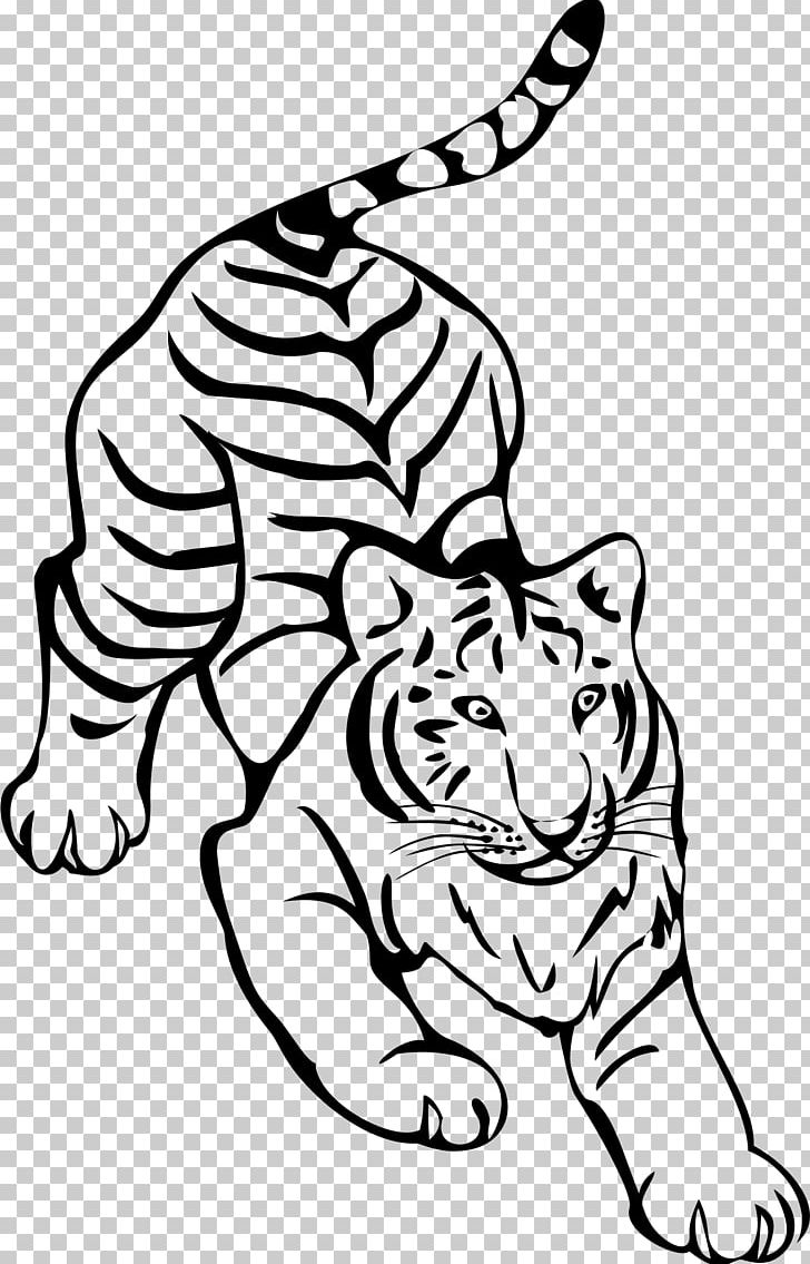 Tiger line clipart png transparent library Tiger Line Art Drawing PNG, Clipart, Animals, Art, Big Cats ... png transparent library