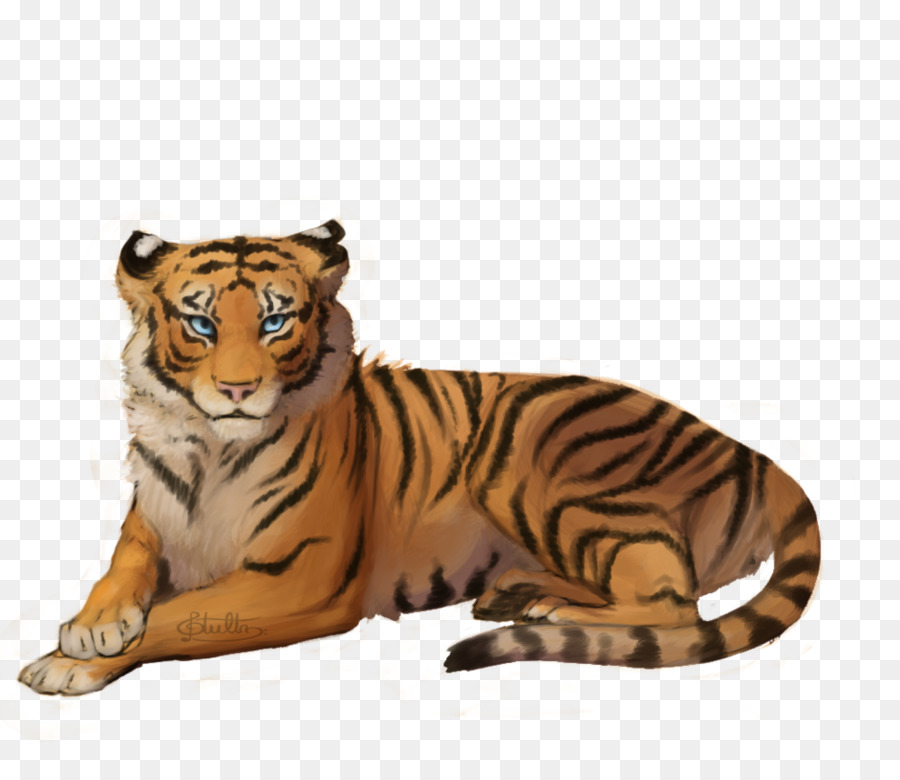 Tiger png clipart jpg library stock Lion Drawing png download - 966*828 - Free Transparent ... jpg library stock