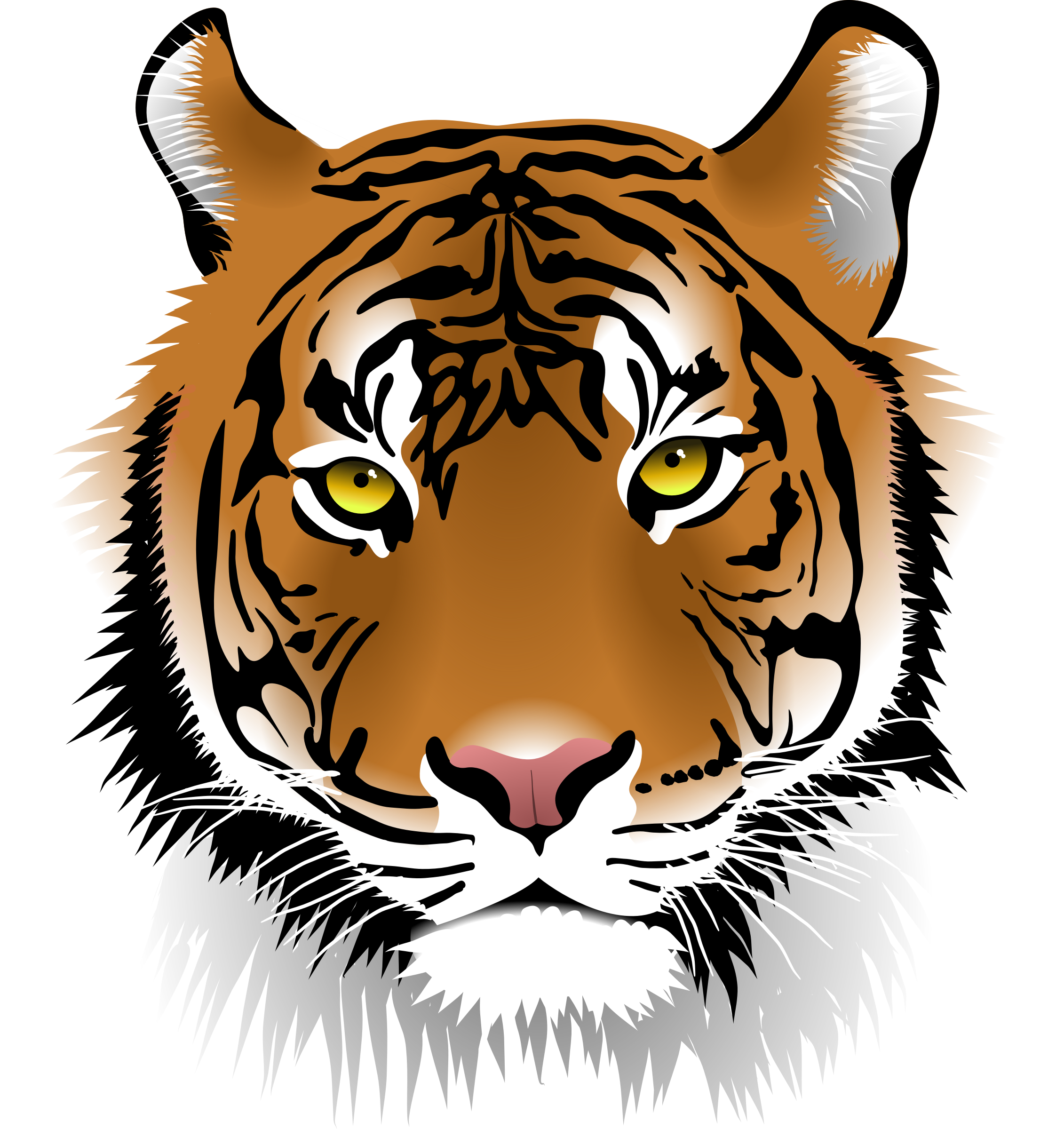 Tiger png clipart jpg black and white stock Tiger Png Face & Free Tiger Face.png Transparent Images ... jpg black and white stock