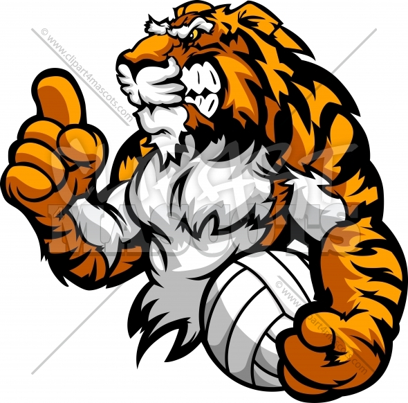 Tiger volleyball clipart clip transparent stock Tiger Volleyball Graphic Vector Logo clip transparent stock