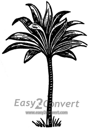 Ti-leaf clipart black and white stock STAMP TI Leaf Plant black and white stock