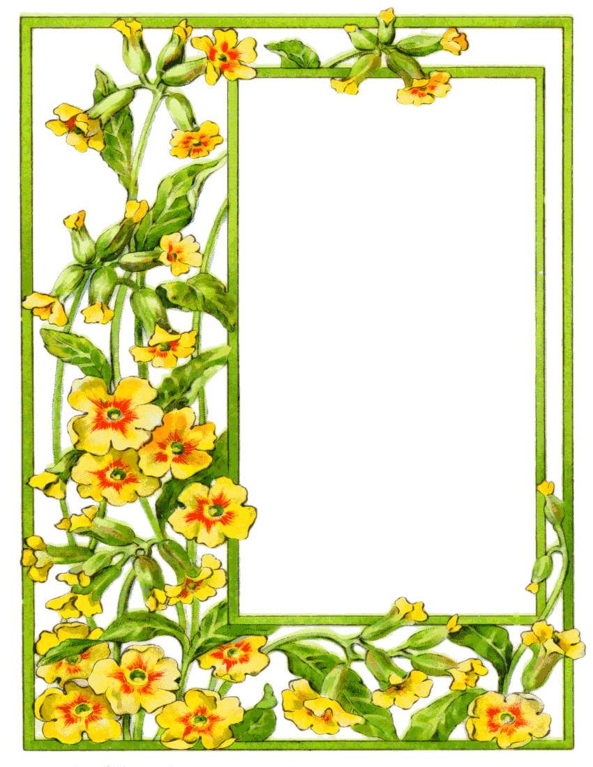Tiny yellow flower border clipart graphic black and white card frame yellow flowers | frames | Frame, Flower frame ... graphic black and white