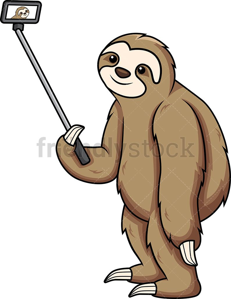 To take a selfie clipart png royalty free download Sloth Taking A Selfie | Sloths | Sloth, Clip art, Cartoon png royalty free download