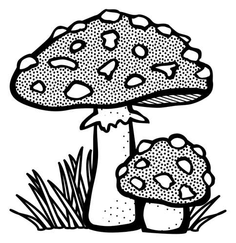 Toadstool clipart black and white vector royalty free Toadstool | Public domain vectors vector royalty free