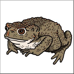 Toas clipart png transparent Clip Art: Common Toad Color 1 I abcteach.com | abcteach png transparent