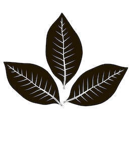 Tobacco leaf clipart image transparent Tobacco Leaf Clipart Leaves Vector Nw Stock - Clipart1001 ... image transparent