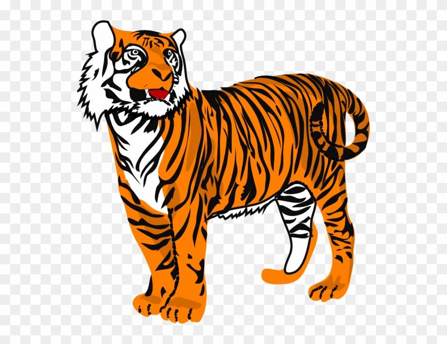 Toger clipart clip transparent library Tiger Clipart - Png Download (#878520) - PinClipart clip transparent library