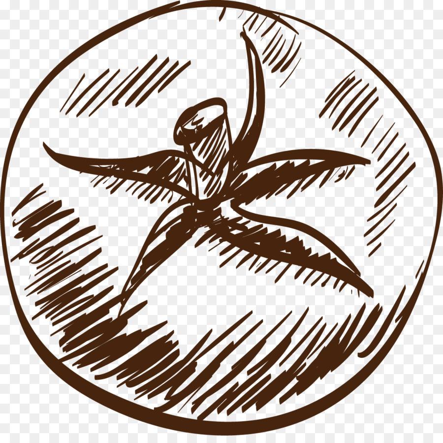 Tomatensalat clipart image download Zeichnung Tomatensalat Clip-art - Skizze Tomaten png ... image download