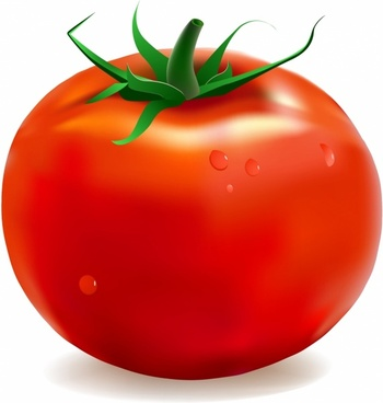 Tomoato clipart picture transparent Tomato clipart free vector download (3,397 Free vector) for ... picture transparent