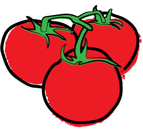 Tomatoes on the vine clipart picture transparent Vine Ripe Tomatoes - Sunripe Certified Brands picture transparent