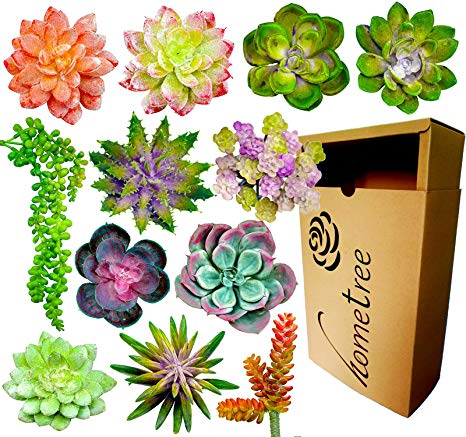 Tools arranged in a paint can vase clipart jpg 12 Fake Succulent Plants Realistic- Artificial Succulent Plants- Large Faux  Succulents Unpotted- Hanging Floral Succulent Cuttings Arrangement- ... jpg