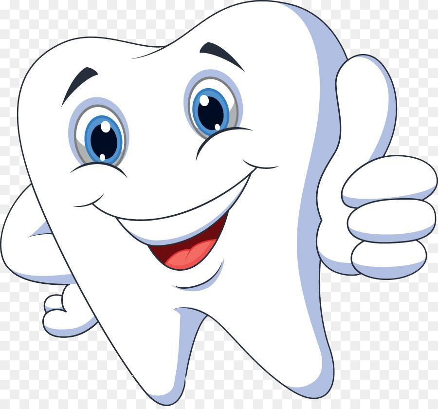 Tooth clipart png clip free library Tooth clipart png 3 » Clipart Station clip free library