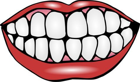 Tooth clipart template banner Mouth and Teeth Clipart - print out and laminate teeth for ... banner