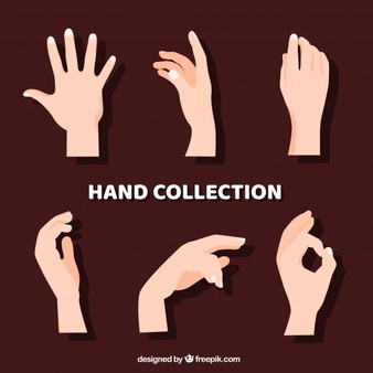 Woman hand grabbing clipart picture transparent download Hands Vectors, Photos and PSD files | Free Download picture transparent download