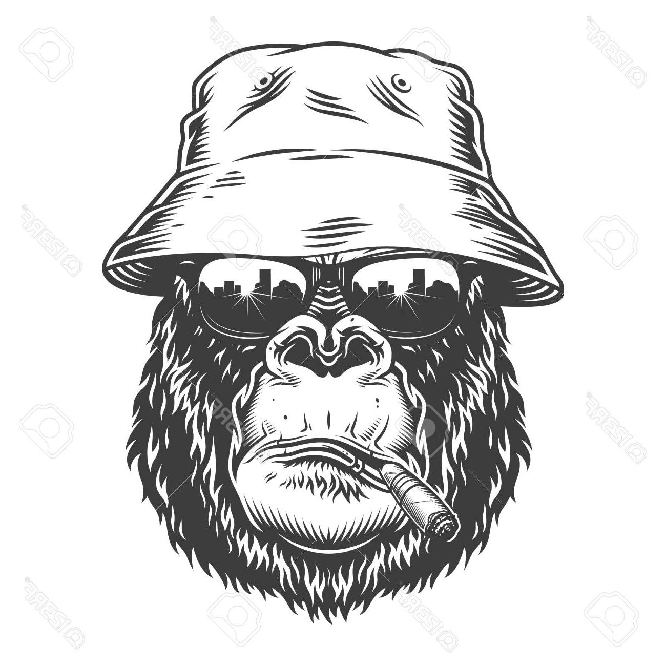 Top of the head clipart jpg freeuse library Top Gorilla Head Clip Art Drawing » Free Vector Art, Images ... jpg freeuse library