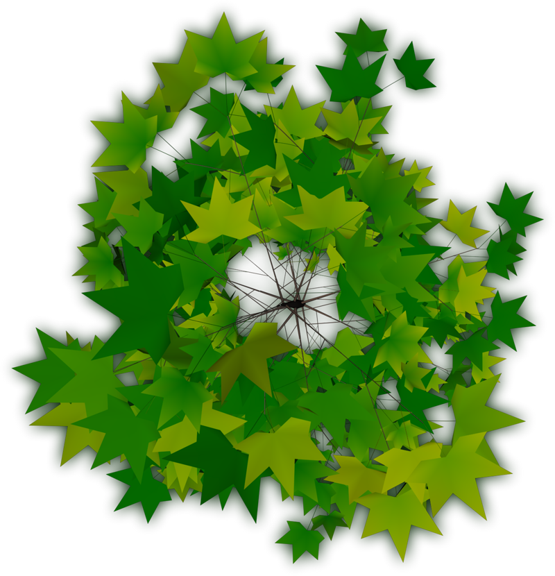 Top Tree Transparent PNG Pictures - Free Icons and PNG Backgrounds vector transparent library