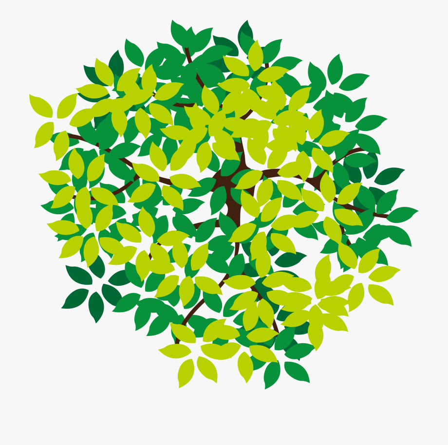 Top view tree clipart free download picture free Lush Top Tree Icon Png Download Free - Trees Top View Vector ... picture free