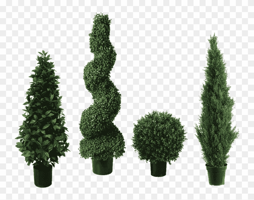Topiary plant christmas clipart clip free library Topiary Trees - Topiary, HD Png Download - 800x800(#1095674 ... clip free library