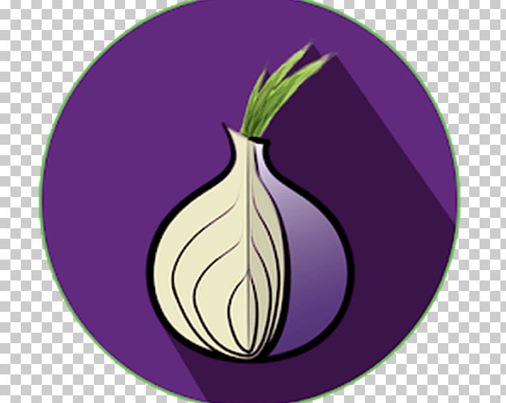 Tor browser icon clipart picture library stock Tor Browser Computer Security .onion Computer Software PNG ... picture library stock