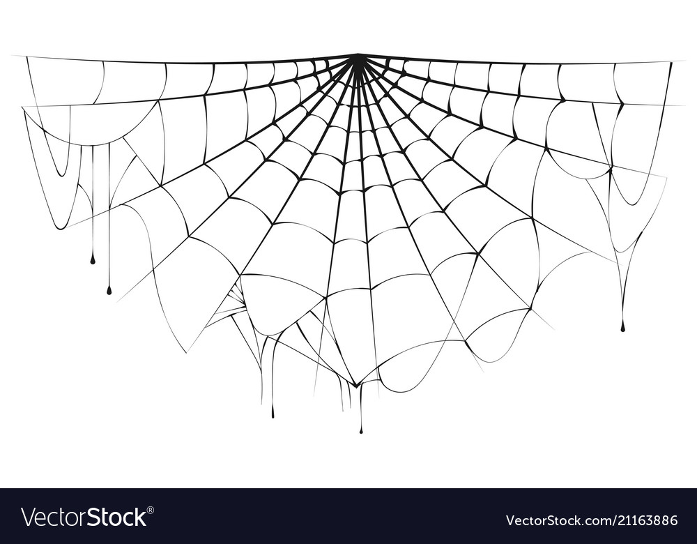Torn spider web clipart black and white svg royalty free Torn semicircular spider web over white background vector image svg royalty free