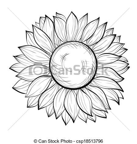 Tournesol black and white clipart