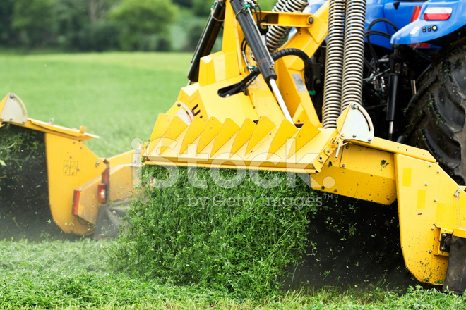 Tractor cutting hay clipart image royalty free download Tractor Towed Forage Harvester Cutting Alfalfa (hay) Field ... image royalty free download