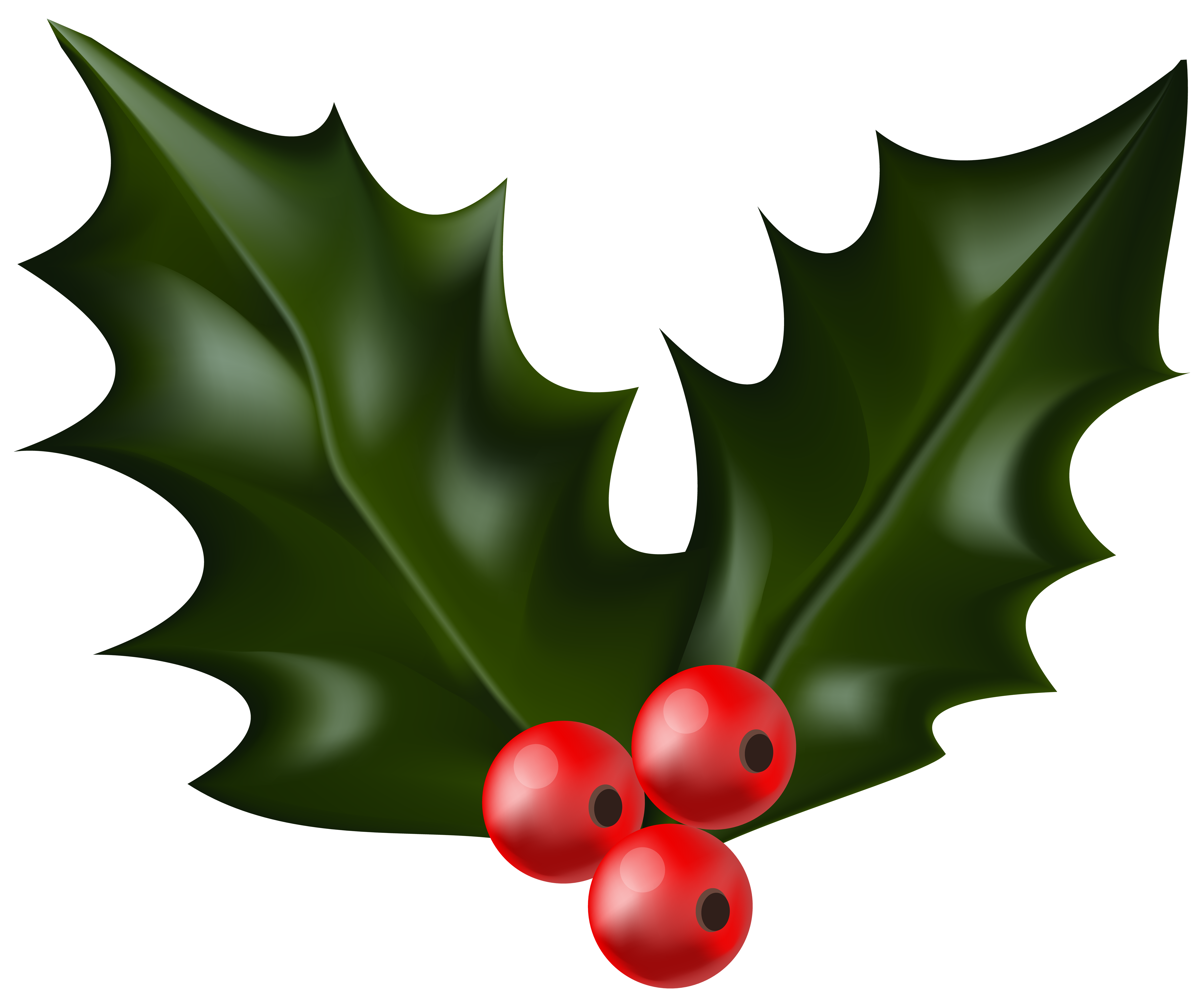 Christmas clipart holly image black and white Mistletoe Clipart at GetDrawings.com | Free for personal use ... image black and white