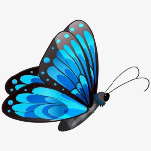 Transparent background butterfly clipart png graphic library download Swimming Butterfly Clipart Transparent - Transparent ... graphic library download