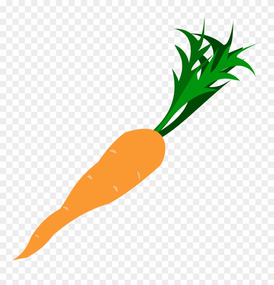 Transparent background carrot nose clipart image library library Carrot - Carrot Clip Art Transparent - Png Download (#22483 ... image library library