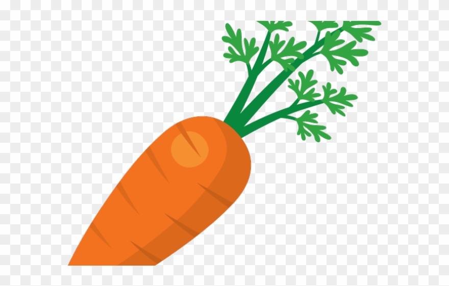 Transparent background carrot nose clipart png freeuse Carrot Clipart Transparent Background - Transparent ... png freeuse