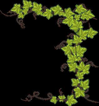 Transparent background ivy strand clipart image transparent Alphabet Word Images, Decoration | FÊTES-MARIAGE in 2019 ... image transparent