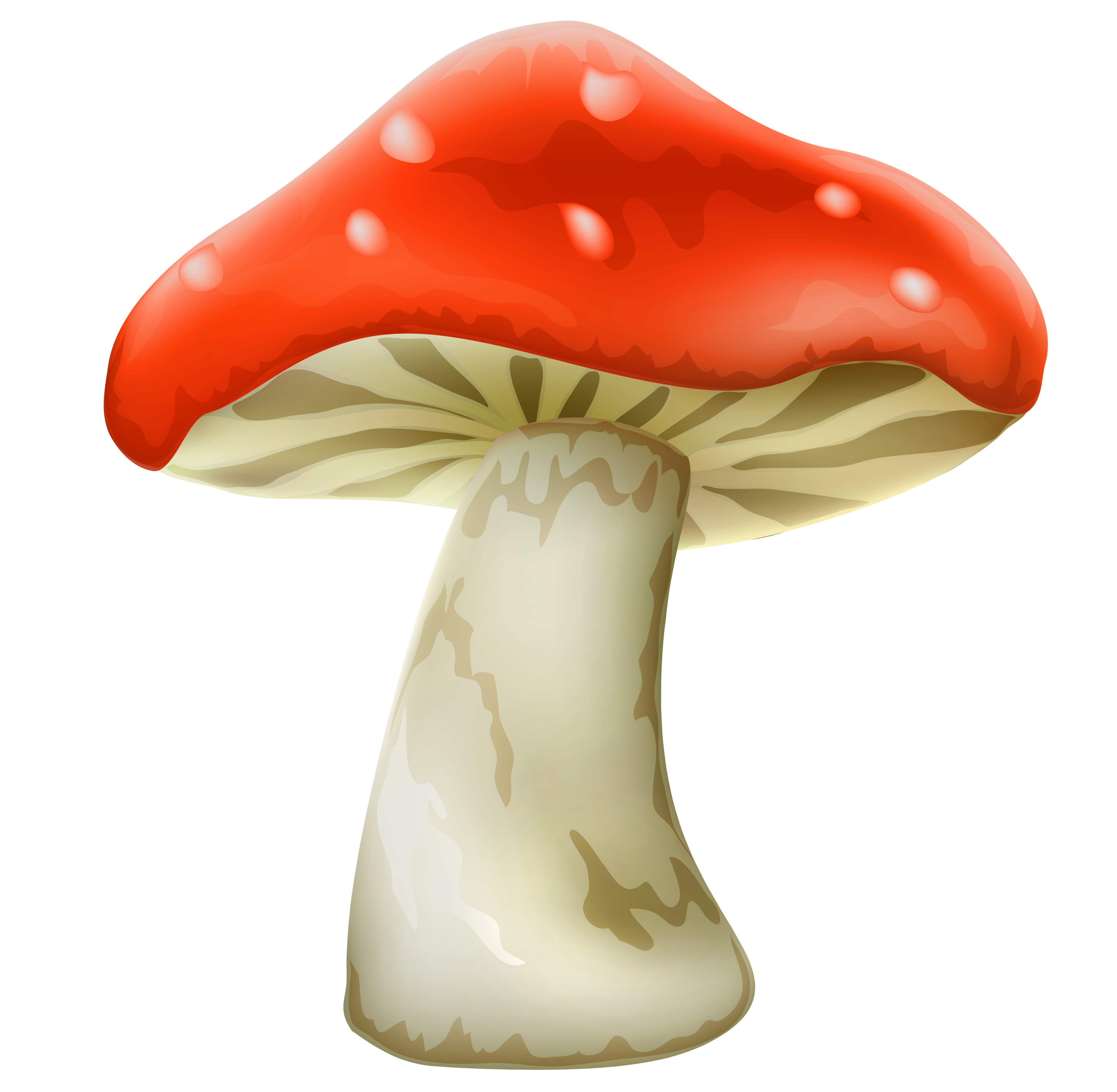 Red Mushroom With White Dots PNG Clipart - Best WEB Clipart graphic black and white download