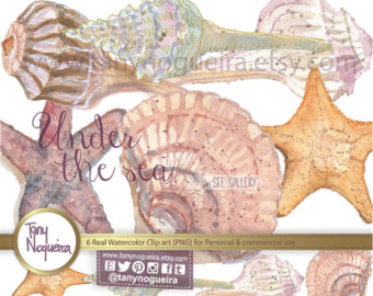 Transparent background png seashell wreath clipart png freeuse stock Watercolor Floral Wreaths Frames Wedding Elements Clipart png freeuse stock
