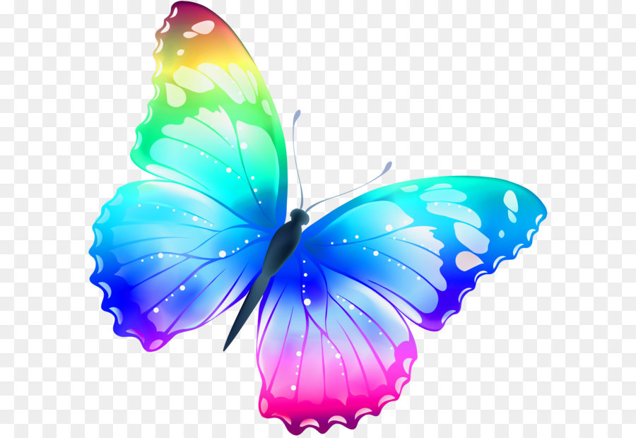 Butterfly Clipart png download - 2900*2755 - Free ... svg library stock