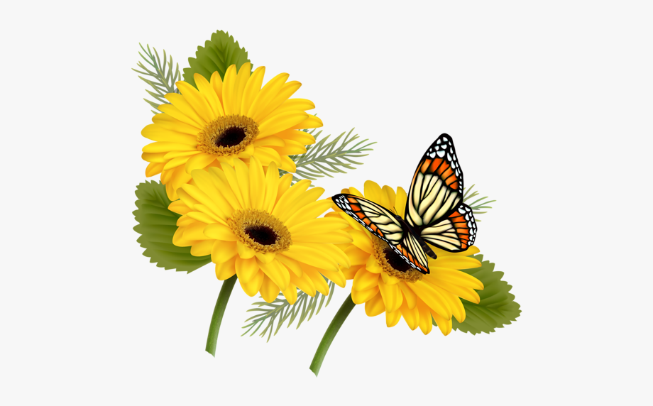 Transparent clipart butterfly on flower jpg black and white library Butterfly With Flowers Png - Butterfly Flower Clip Art ... jpg black and white library