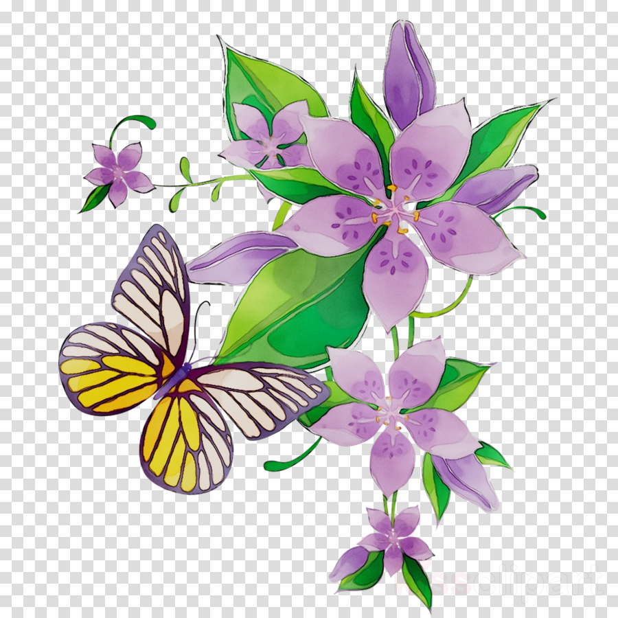 Transparent clipart butterfly on flower vector black and white stock Floral Flower Background clipart - Butterfly, Flower, Purple ... vector black and white stock