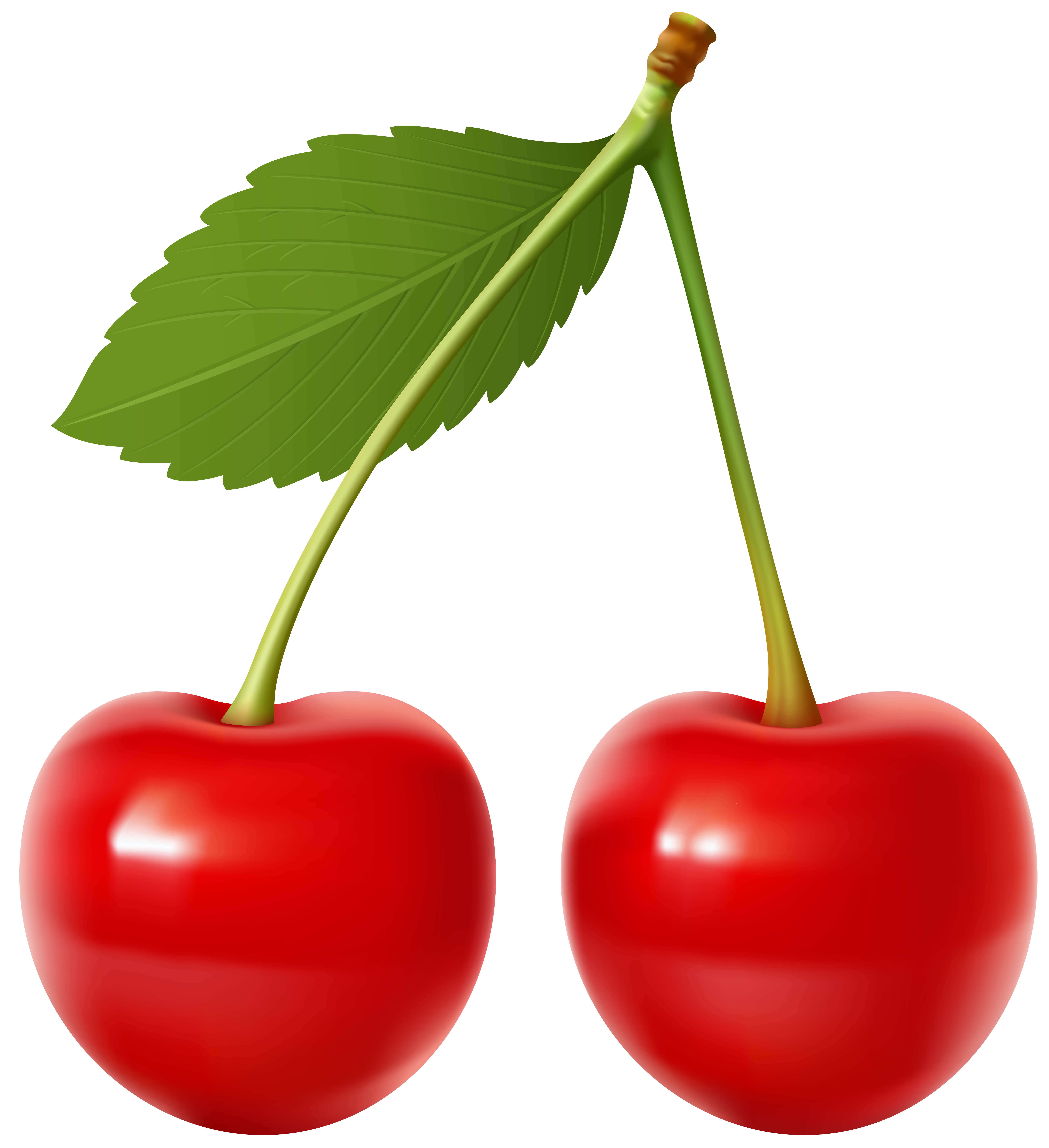 Transparent clipart cherry picture black and white Cherries Transparent Clip Art Image | Gallery Yopriceville ... picture black and white