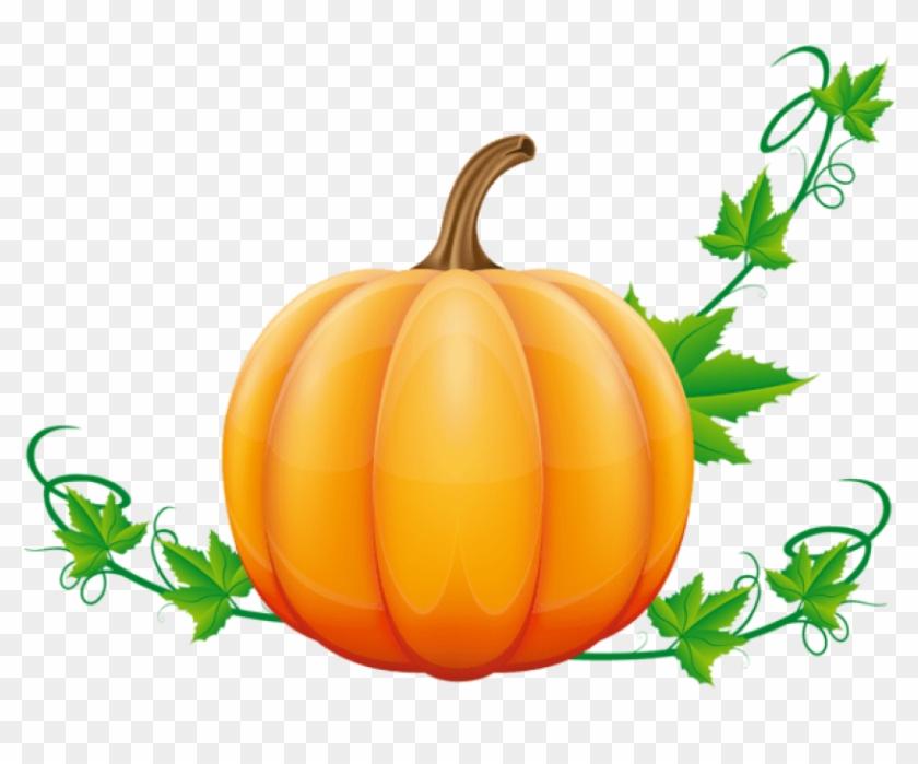 Transparent clipart pumpkin graphic royalty free stock Free Png Download Pumpkin Clipart Png Photo Png Images ... graphic royalty free stock