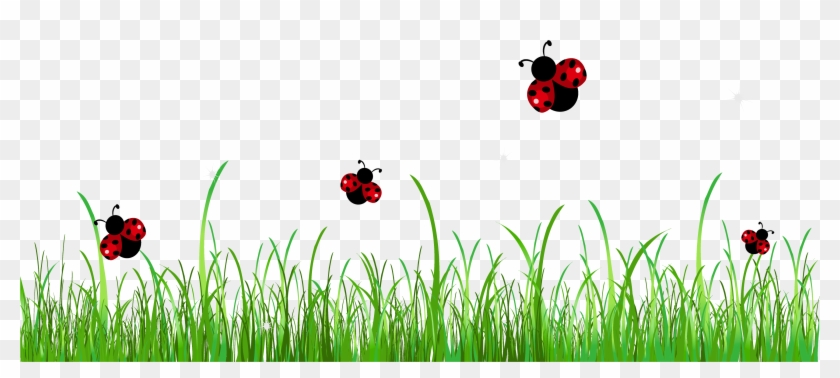 Ladybug Page Divider Free Clipart Clip Art Library ... image transparent