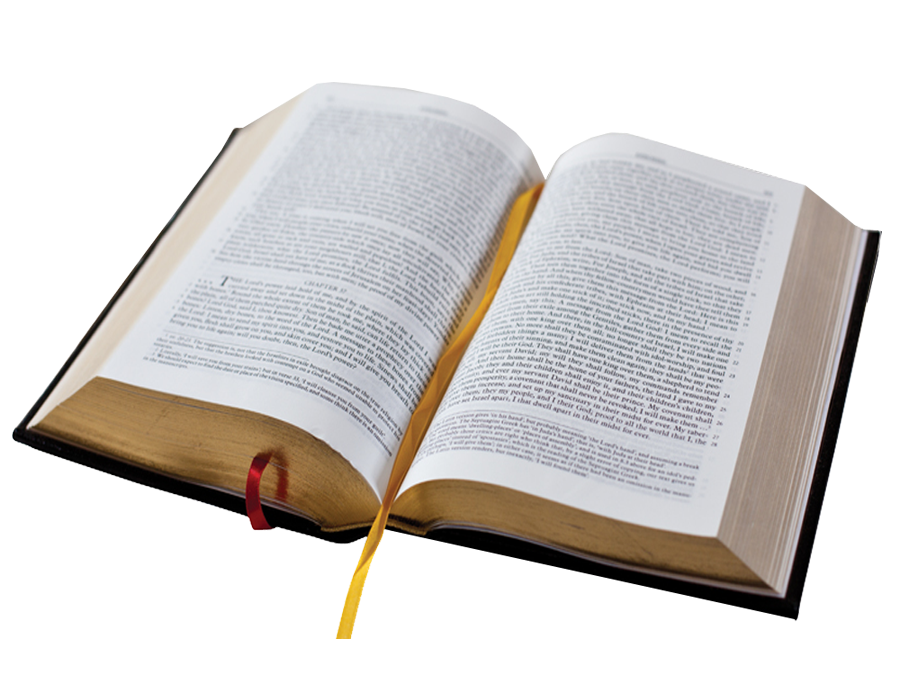 Transparent png clipart book pages svg free download Holy bible PNG images free download svg free download