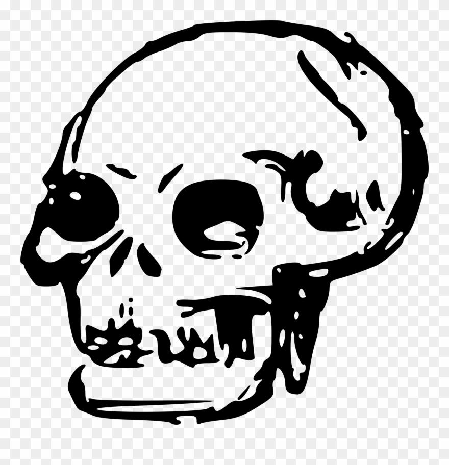 Transparent skull clipart svg Skeleton Head Clipart Transparent - Skull Clipart - Png ... svg
